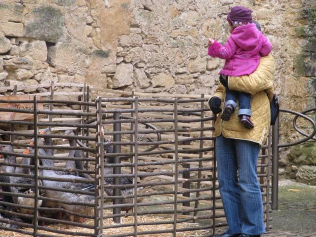 Fête de l'oie à Sarlat