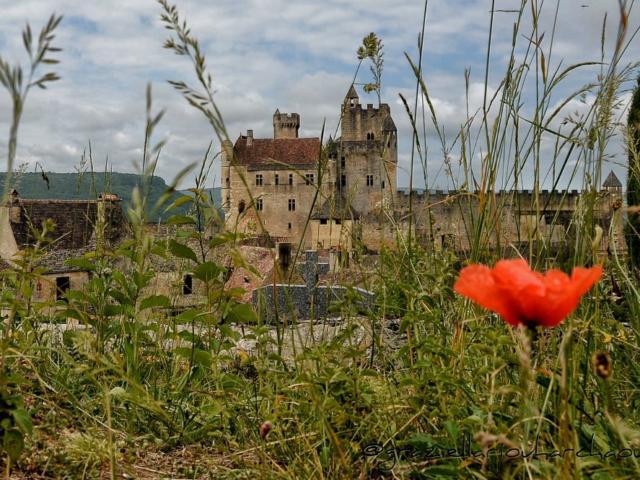 Château de Beynac sur la vallée de la Dordogne