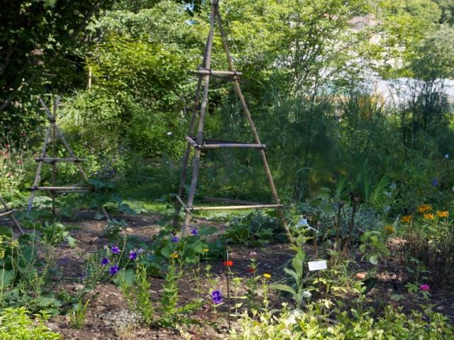 Brantôme et ses jardins