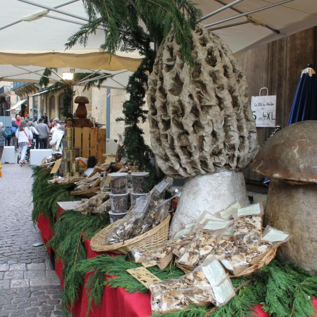 Etal de cèpes et autres champignons du Périgord