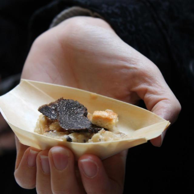 Dégustation de bouchées à base de truffe