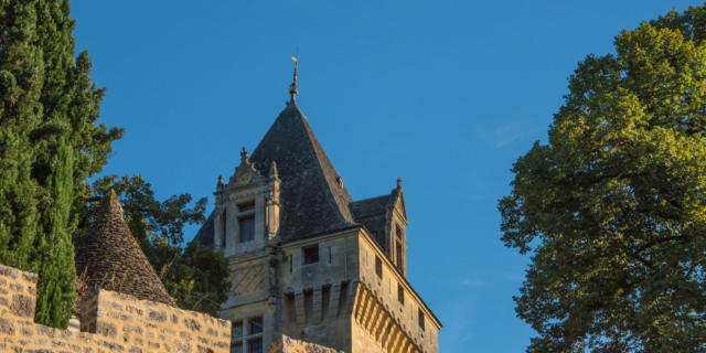 Vue sur la tour du Château de Montfort