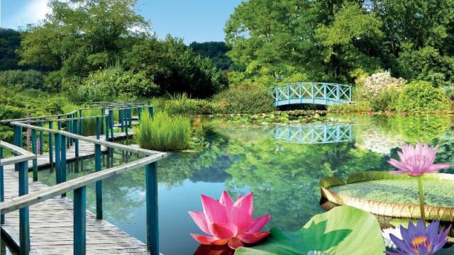 Les Jardins D'eau à Carsac, Pays de Fénelon