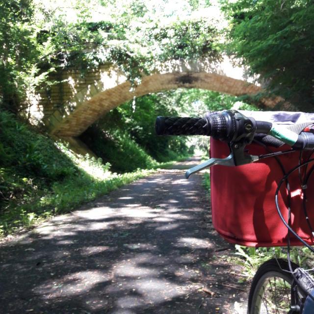 Voie Verte En Vélo