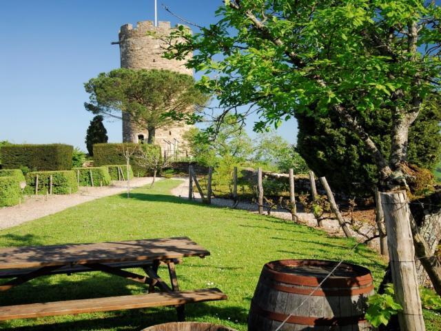 Château de Turenne près de Brive