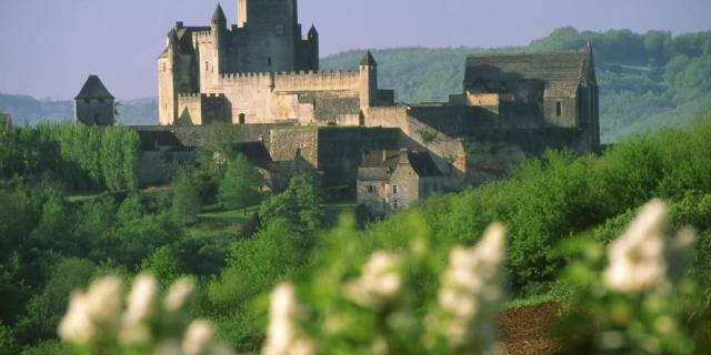 Beynac Château Vue Nord Avec Lilas Blancs